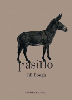 L'asino Jill Bough