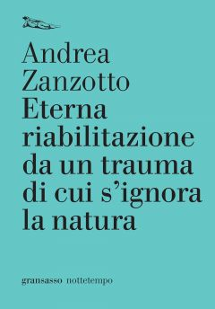 Eterna riabilitazione da un trauma di cui s'ignora la natura Andrea Zanzotto